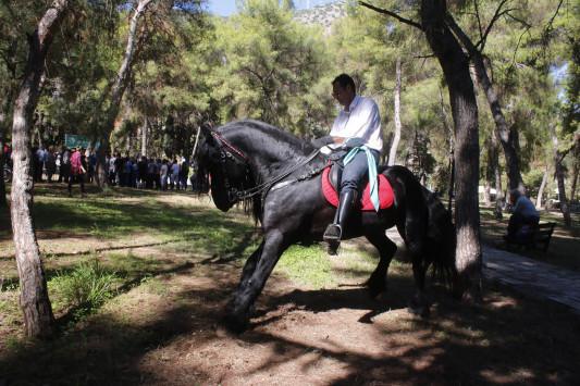 Περιουσιολόγιο: Από χρυσές λίρες μέχρι... άλογα! Τι πρέπει να δηλώσετε