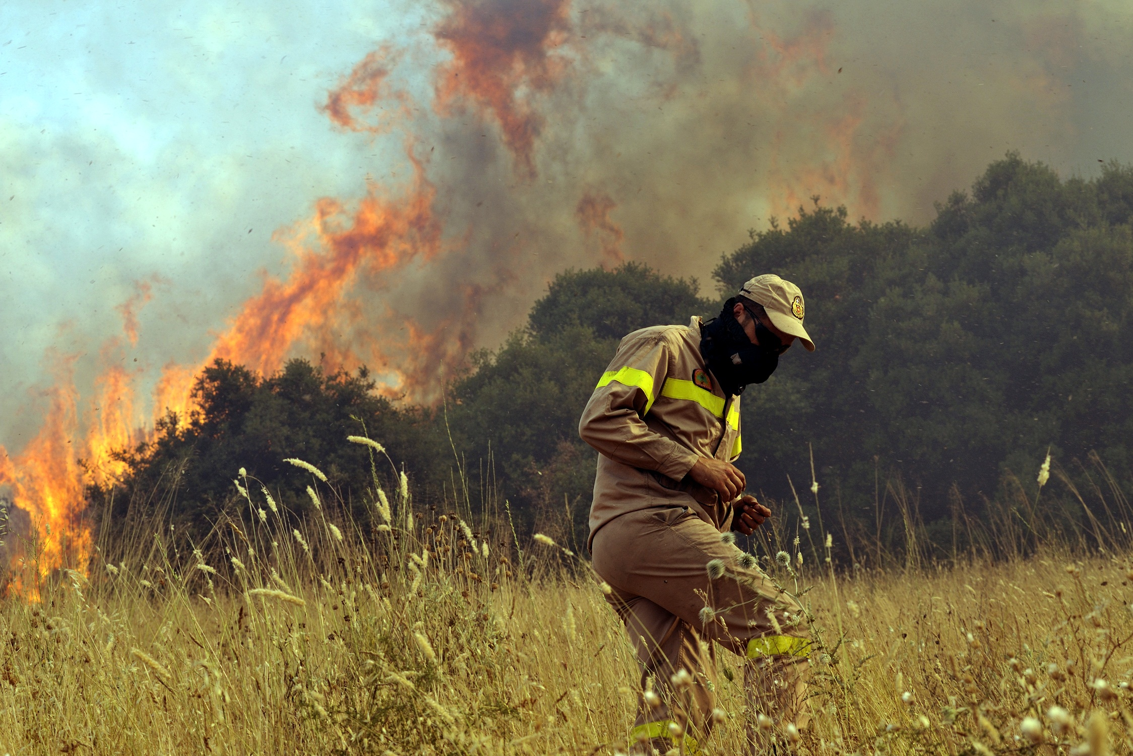 Οι φλόγες ''καταπίνουν'' τα πάντα στο πέρασμά τους - ΦΩΤΟ EUROKINISSI