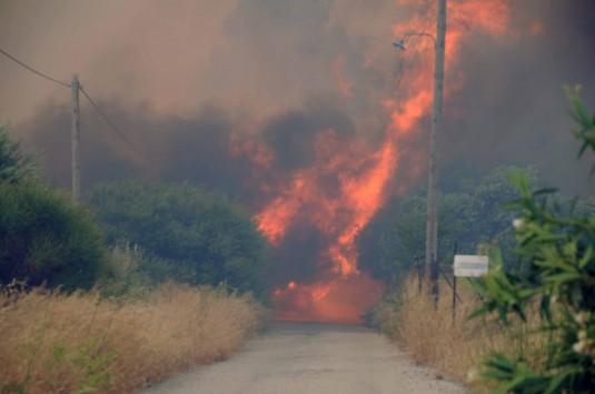Συμβασιούχοι πυροσβέστες ξεκίνησαν να πάνε στην Πάτρα και τους γύρισαν πίσω γιατί δεν έχουν εγκριθεί τα εκτός έδρας