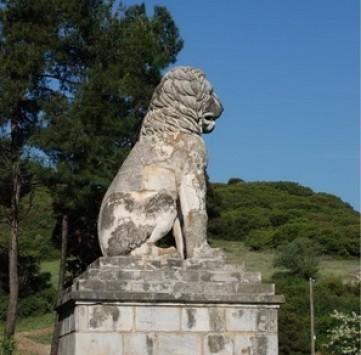 Σέρρες: Εικόνες απ'τον τάφο που εικάζεται ότι ανήκει στον Μ.Αλέξανδρο!