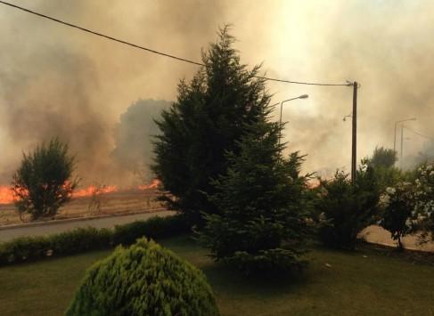 Κοζάνη: Οι φλόγες `έγλειψαν` τα σπίτια (ΦΩΤΟ & VIDEO)