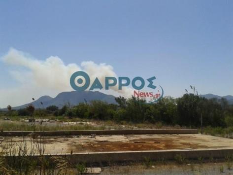Ανεξέλεγκτη η φωτιά στη Μεσσηνία - Εκκενώθηκε το χωριό Μαυρομμάτι και γειτονικοί οικισμοί