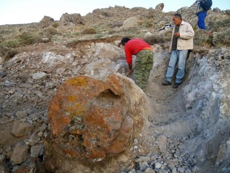 Λέσβος: Υποψήφιο Μνημείο Παγκόσμιας Κληρονομιάς της Unesco το Απολιθωμένο Δάσος