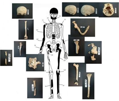 Αμφίπολη: Καθηγητής Αρχαιολογίας στο Newsit: Είναι οικογενειακός τάφος αλλά η Ολυμπιάδα δεν είναι θαμμένη στον λόφο Καστά!