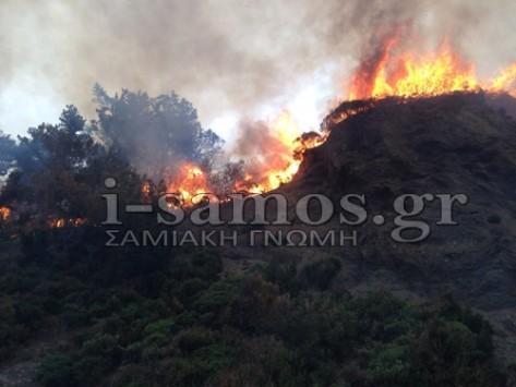 Σάμος: Σε ύφεση η μεγάλη φωτιά που έκανε στάχτη 2.000 στρέμματα δασικής έκτασης - Δείτε φωτό και βίντεο!