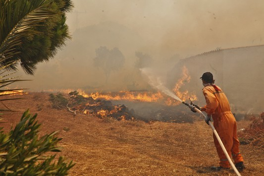 Φωτιές: Σε ύφεση τα πύρινα μέτωπα στην Πελοπόννησο - `Καμπανάκι` της Πυροσβεστικής