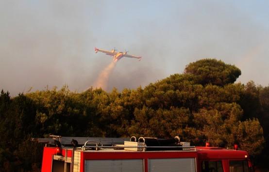 Ηλεία: Φωτιά σε δάσος της περιοχής Δραγώγιο της Ανδρίτσαινας - 30 πυροσβέστες στη μάχη με τις φλόγες!
