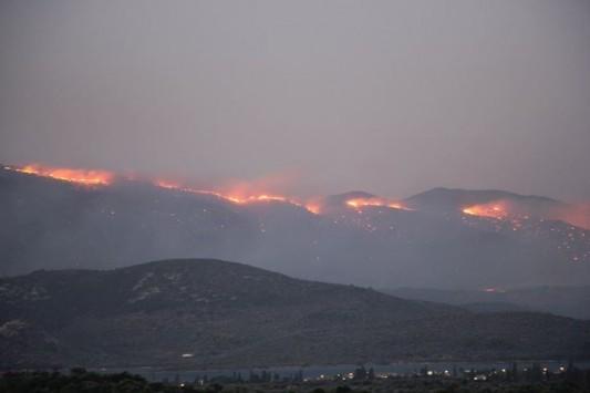 Μυτιλήνη: Ανεξέλεγκτη η φωτιά στη χερσόνησο της Αμαλής - Δείτε το βίντεο!