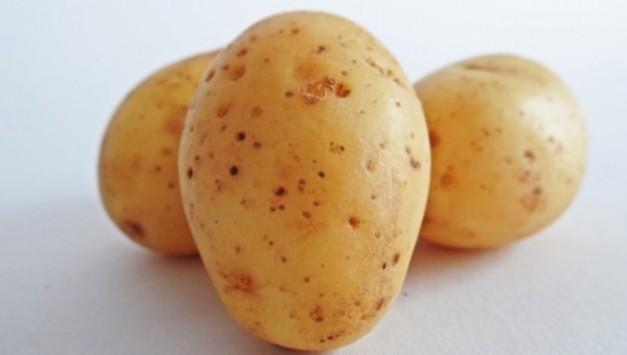 Γιατί ΔΕΝ πρέπει να βάζετε τις πατάτες στο ψυγείο - Ποιος κίνδυνος δημιουργείται