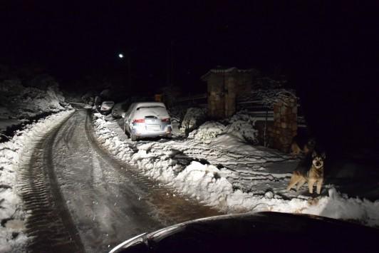 Νύχτα παγετού σε όλη τη χώρα - Χιονίζει στα βόρεια προάστια της Αθήνας - Ο καιρός της Πρωτοχρονιάς