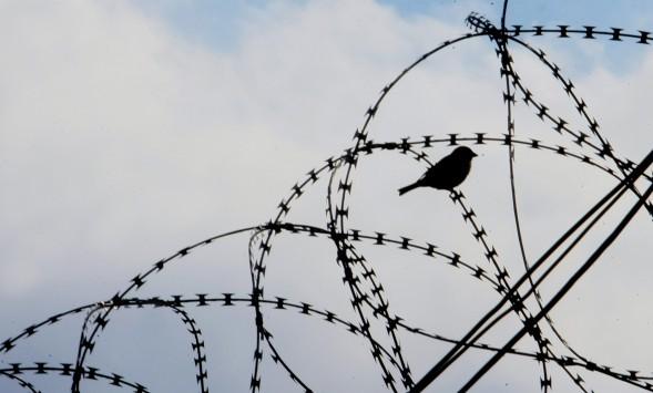 Ρούπα - Μαζιώτης: Ξέφραγο αμπέλι οι φυλακές! Άνετα προσεγγίζει το ελικόπτερο!