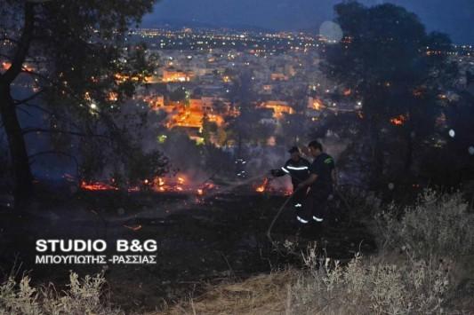 Άργος: Φωτιά ξέσπασε στον Προφήτη Ηλία