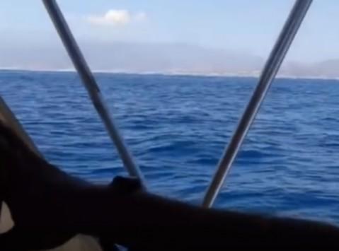 Κρήτη: Καπετάνιος τραβούσε αυτό το βίντεο και ''έπιασε'' μια σκηνή που θα του μείνει αξέχαστη!