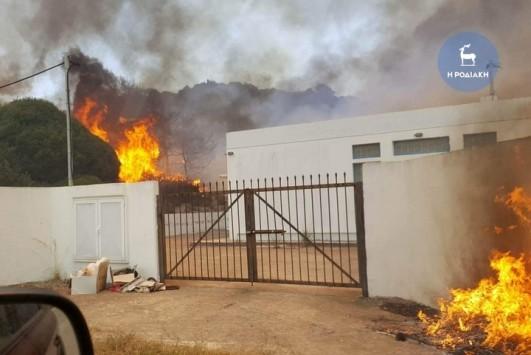 Φωτιά ΤΩΡΑ στη Ρόδο: Σκληρή μάχη με την πύρινη λαίλαπα που απείλησε σπίτια - `Πέφτει` ο αέρας - Σε εξέλιξη σύσκεψη για συντονισμό - ΦΩΤΟ & ΒΙΝΤΕΟ