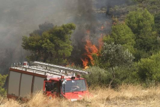 Μυτιλήνη: Επικίνδυνη φωτιά τώρα και μπλάκ άουτ στο μεγαλύτερο μέρος του νησιού - Πυρκαγιά κοντά σε δεξαμενές της ΔΕΗ!