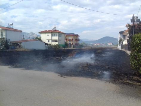 Φωτιά απείλησε σπίτα στην Ξάνθη