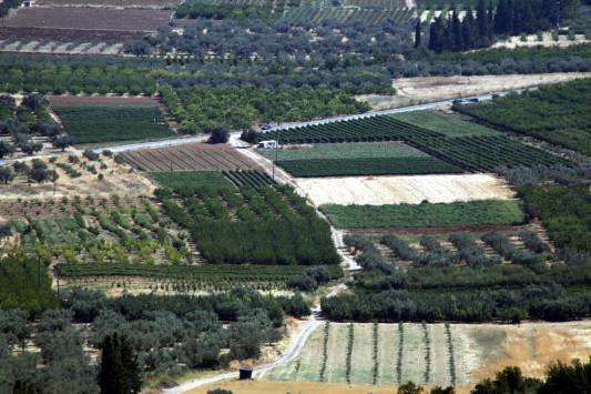 Μπάχαλο το ελληνικό δημόσιο - Χιλιάδες δημόσια κτίρια και εκτάσεις έχουν καταπατηθεί - Κλέβουν ακόμα και παραλίες και αρχαιολογικούς χώρους