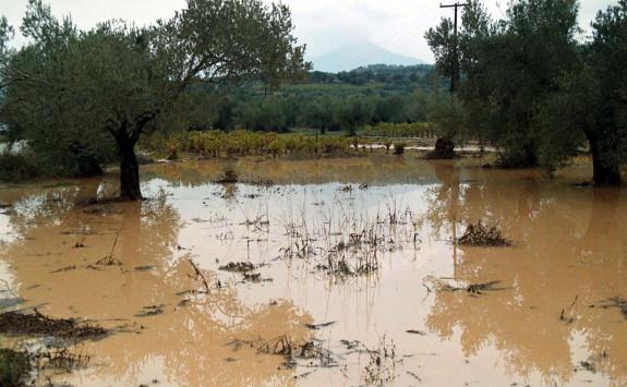Θεσσαλονίκη: Ολική καταστροφή για βιοκαλλιεργητές στην Επανομή - Η εικόνα μετά τις πλημμύρες!