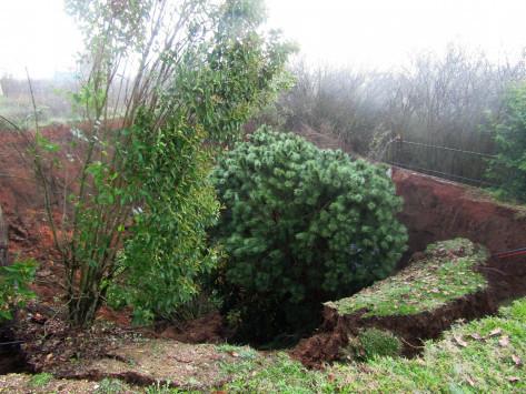 Σεισμός στα Γιάννενα: Άνοιξε η γη στο Καλπάκι! «Κρατήρας» 30 μέτρων… «ρούφηξε» πανύψηλα δέντρα!