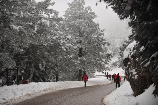 Καιρός: Που και πότε θα χιονίσει