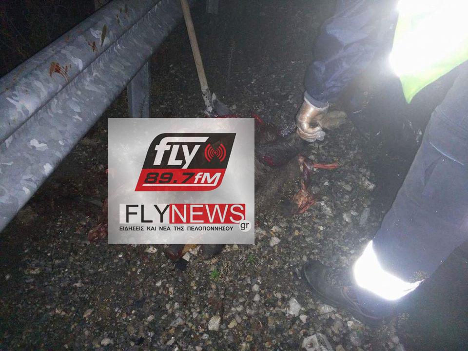 ΦΩΤΟ από flynews.gr