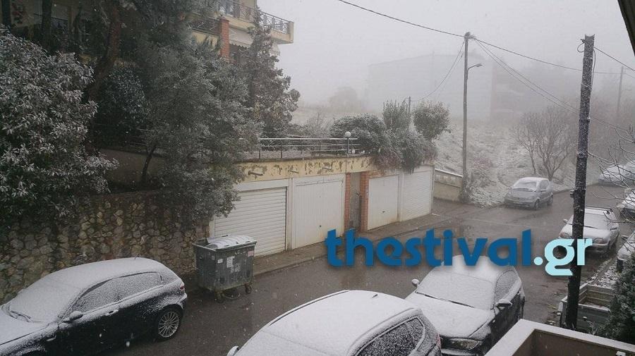 ΦΩΤΟ από thestival.gr