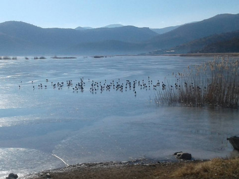 Καιρός: Πάγωσαν οι λίμνες Καστοριάς και Χειμαδίτιδας [pics]
