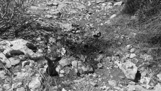 Θρίλερ με πτώμα που βρέθηκε στο ΣΕΦ