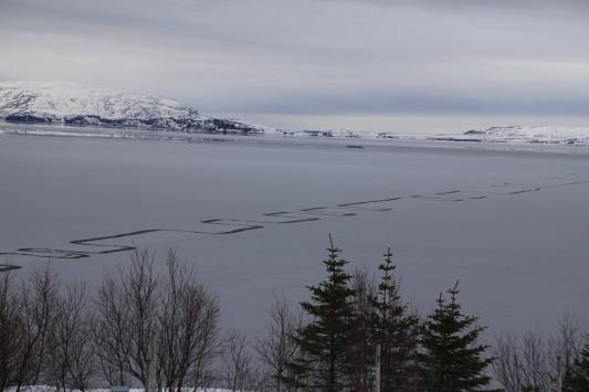 Περίεργο φαινόμενο σε λίμνη της Ισλανδίας τρομάζει τους κατοίκους