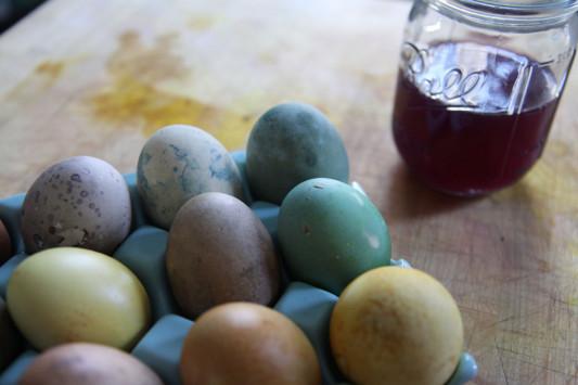 Πάσχα: Βάψιμο αυγών με φυσικά υλικά