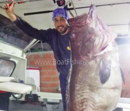 Χαλκιδική: Έριξαν το παραγάδι σε βάθος 220 μέτρων και δικαιώθηκαν - Ένα ψάρι ασήκωτο [pic, vid]