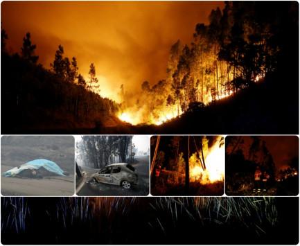 Πορτογαλία - Φωτιά: Φρίκη! 62 οι νεκροί στο δάσος της Κόλασης! Σοκαριστικές εικόνες