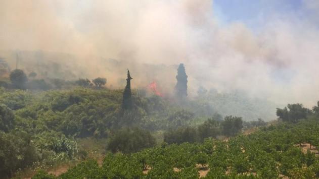 Μεσσηνία: Υπό μερικό έλεγχο η φωτιά στην Κορώνη – Στάχτη 30 στρέμματα [vids]