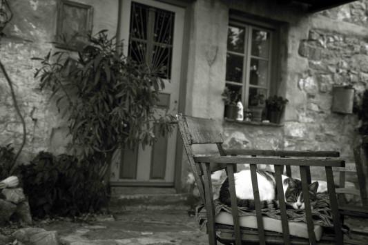 Μεσσηνία: Αιχμάλωτη δίπλα από το σπίτι της - Η απίστευτη περιπέτεια γυναίκας!