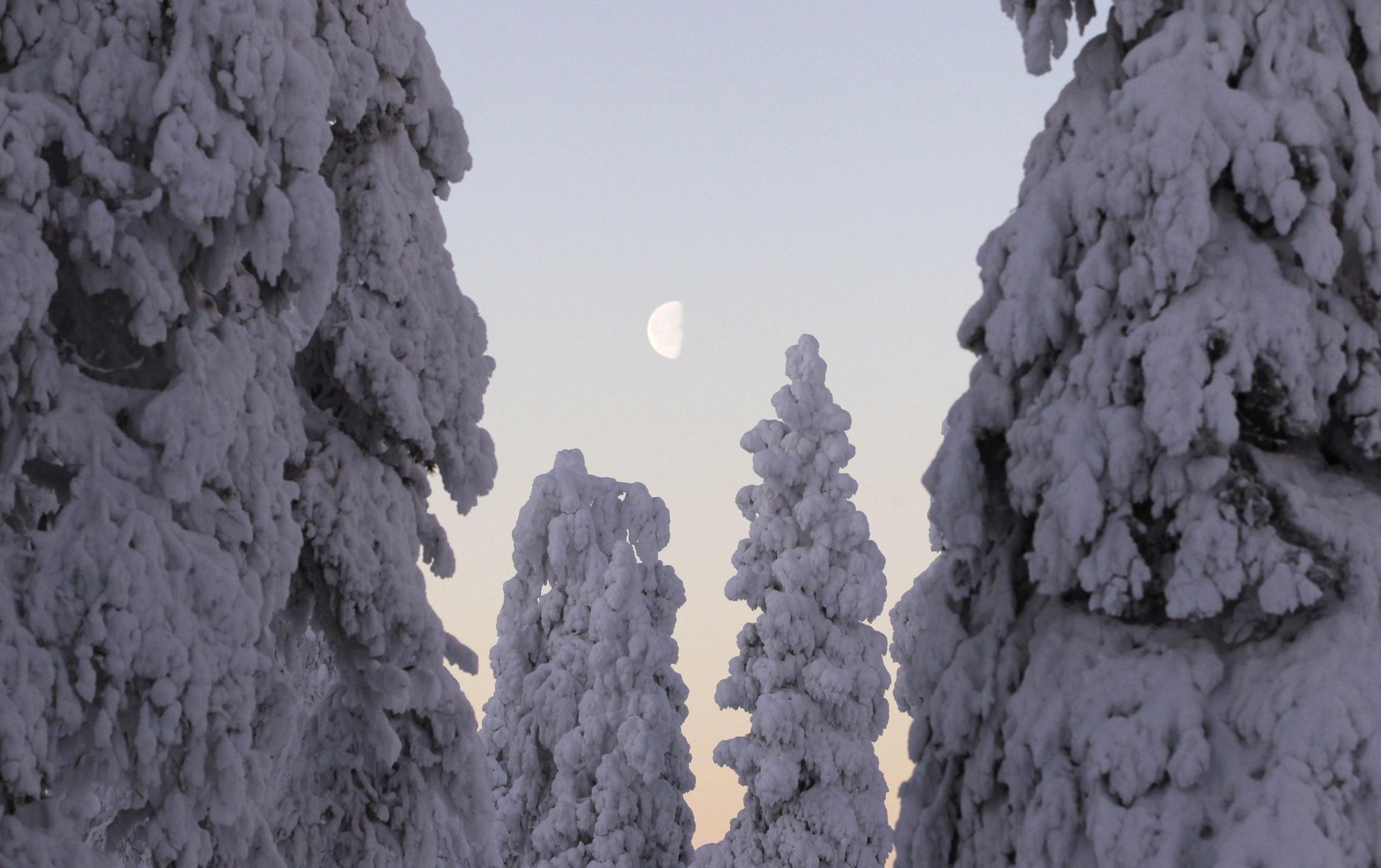 Φινλανδία. ΦΩΤΟ REUTERS