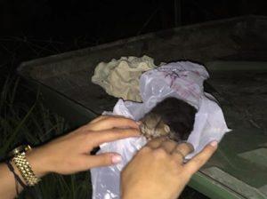 Κοζάνη: Πλησίασαν τα σκουπίδια και είδαν αυτή την εικόνα που δεν πρόκειται να ξεχάσουν ποτέ [pic]