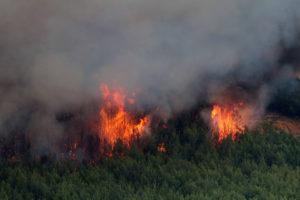 Αλεξανδρούπολη: Έψηνε… παϊδάκια και έβαλε φωτιά σε δάσος
