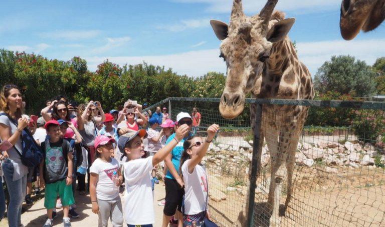 Χιλιάδες μαθητές στο πρόγραμμα «Οι Μικροί Ήρωες μαθαίνουν» | Newsit.gr