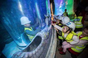 """Άνοιξε στην Κίνα το πρώτο ενυδρείο της παγκόσμιας αλυσίδας """"Sea Life"""""""