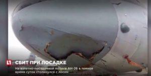 Ρωσικό αεροσκάφος συγκρούστηκε με..ελάφι! [vid]