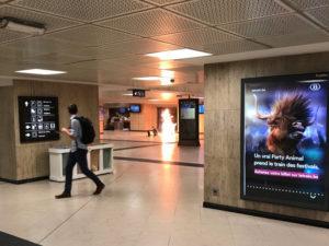 Ο τρόμος επέστρεψε στις Βρυξέλλες! Στρατιώτες πυροβόλησαν άντρα ζωσμένο με εκρηκτικά [vids]