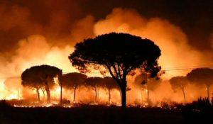 Κόλαση στην Ισπανία! Τεράστια φωτιά καίει ολόκληρη περιοχή – Εκκενώνονται σπίτια και ξενοδοχεία [pics, vids]