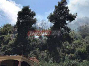 Μεγάλη φωτιά στην Αρηνή Ζαχάρως – Κινδύνευσε σπίτι