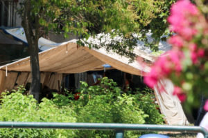 Κατασκηνώσεις δήμου Αθηναίων 2017: Συμμετοχή συλλόγων ΑΜΕΑ