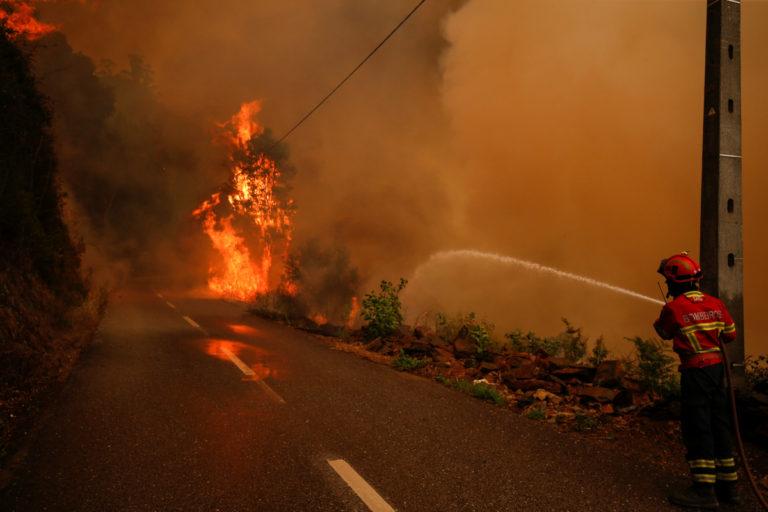 Πορτογαλία: Καναντέρ συνετρίβη κατά την επιχείρηση κατάσβεσης της πυρκαγιάς!   Newsit.gr