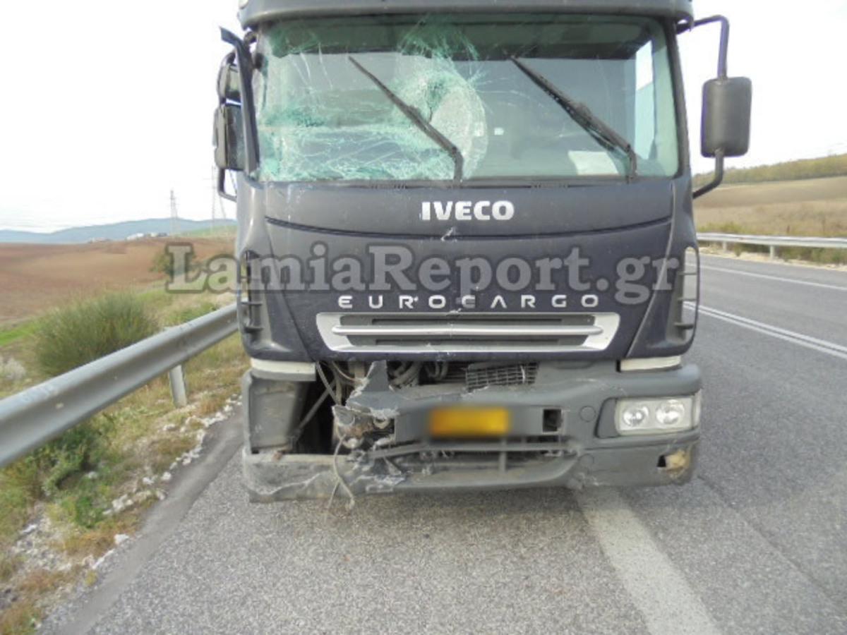 Λαμία: Τροχαίο λόγω αδέσποτων σκύλων – Πετάχτηκαν στο δρόμο και δείτε τι ακολούθησε [pics] | Newsit.gr