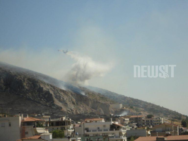 Πυρκαγιές στην Εύβοια! Καρέ καρέ η επιχείρηση κατάσβεσης   Newsit.gr
