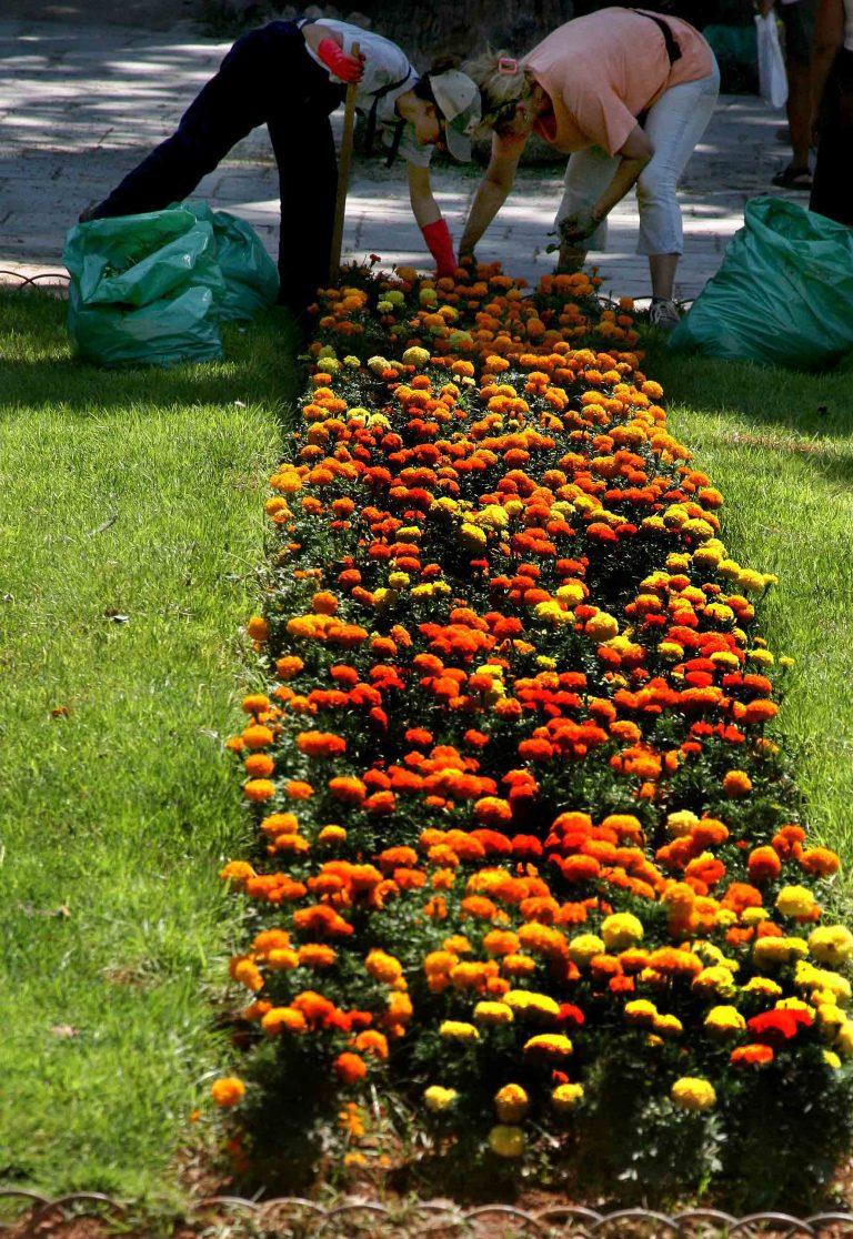 Φωκίδα: Ύποπτα άτομα παριστάνουν τους κηπουρούς!   Newsit.gr