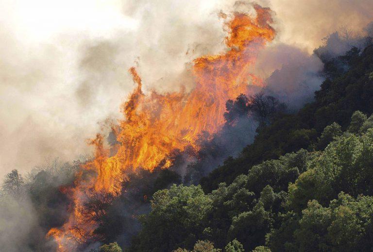 Υπό μερικό έλεγχο οι πυρκαγιές σε Ζάκυνθο και Κέρκυρα   Newsit.gr