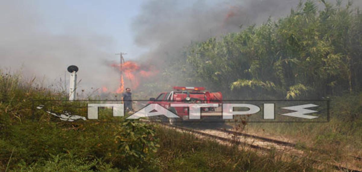 Ηλεία: Μεγάλη φωτιά έκανε στάχτη καταυλισμό τσιγγάνων – Δείτε βίντεο!   Newsit.gr